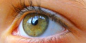 ดวงตา