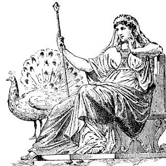 สัญลักษณ์ของเฮร่าคือ วัว นกยูง และสิงโต พฤกษาประจำตัวคือ ผลทับทิม